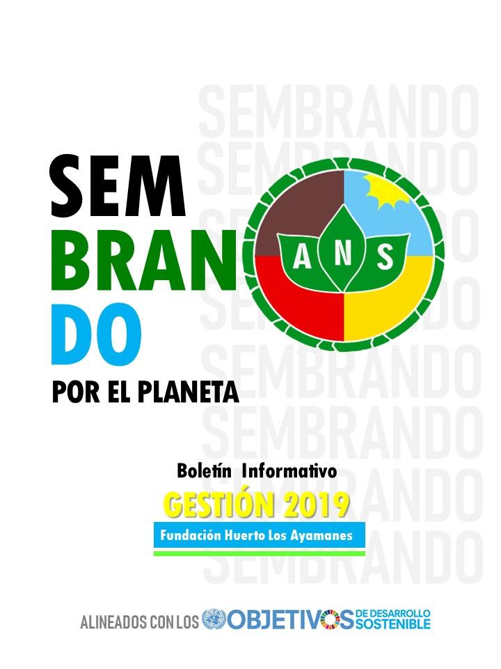 Boletín informativo 2019