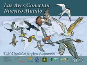 ¡Por las aves del mundo!