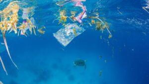 Un mundo de plástico: 10 razones para revertirlo